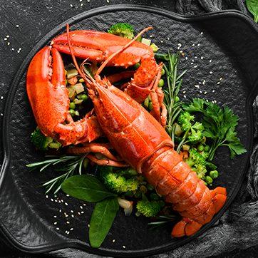 Australian Seafood Championships